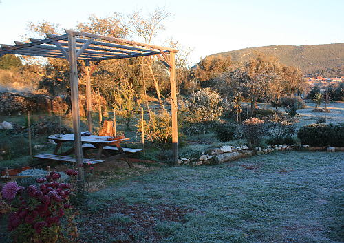 frostgarden